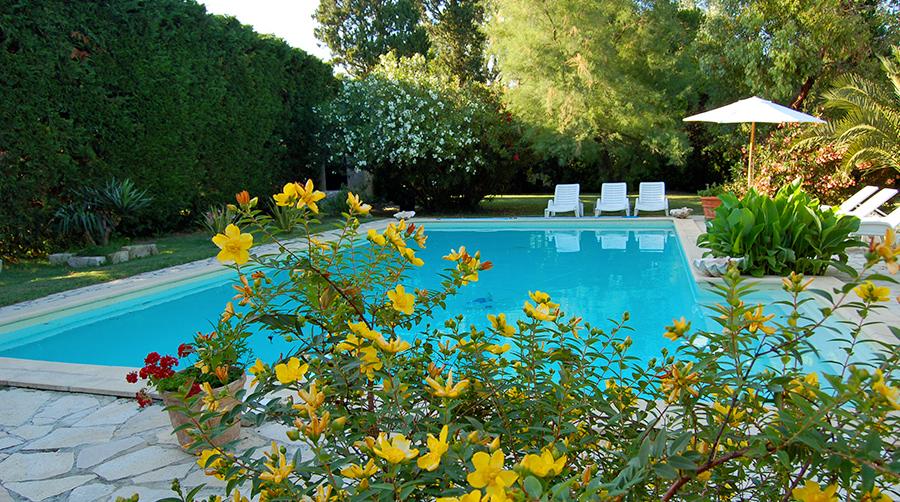 location avec piscine en camargue
